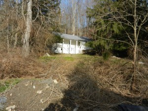 Purchased this home to build a Hobbit house on this property.