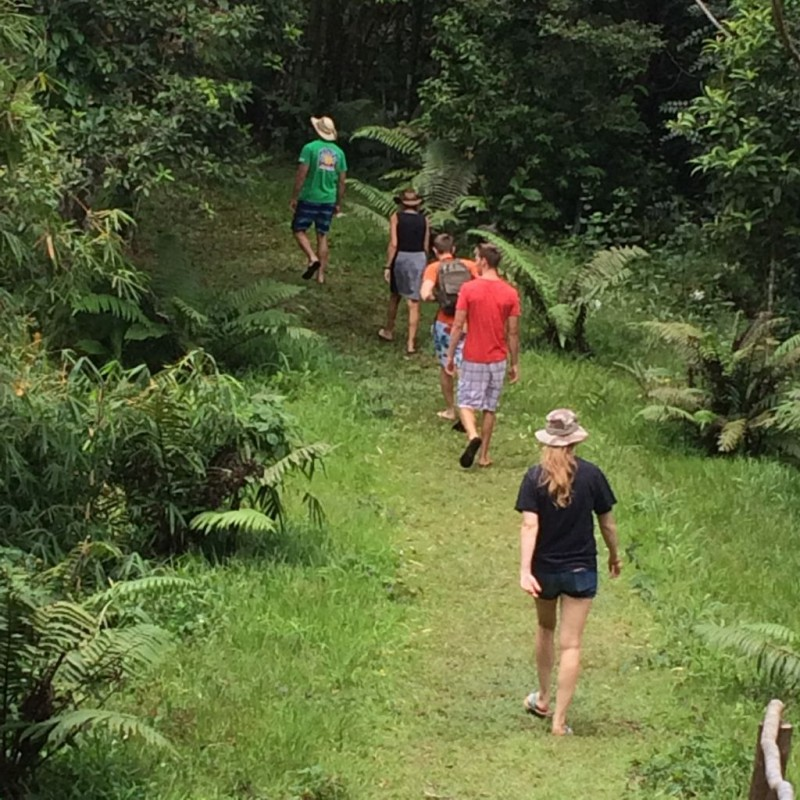The Traveling Company going through the rain forest.